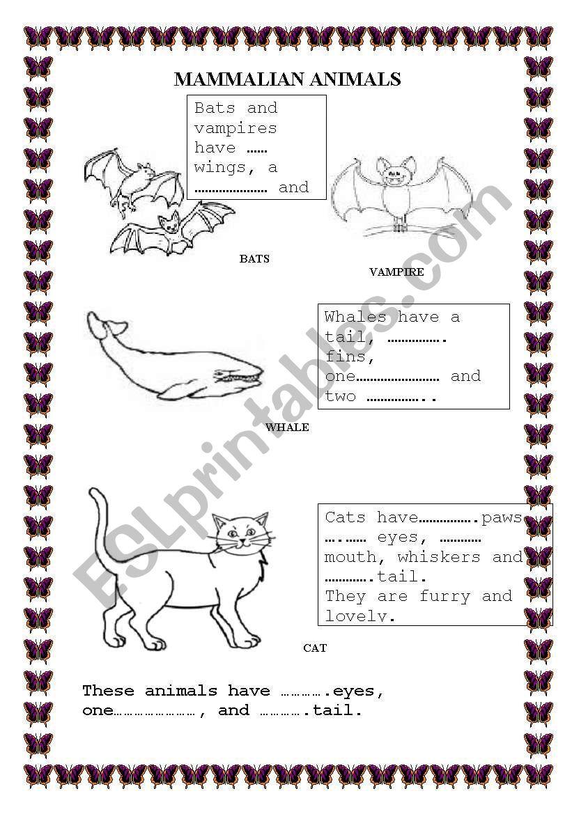 Mammalian Animals worksheet