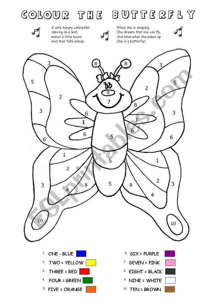 COLOUR BY NUMBERS - BUTTERFLY worksheet