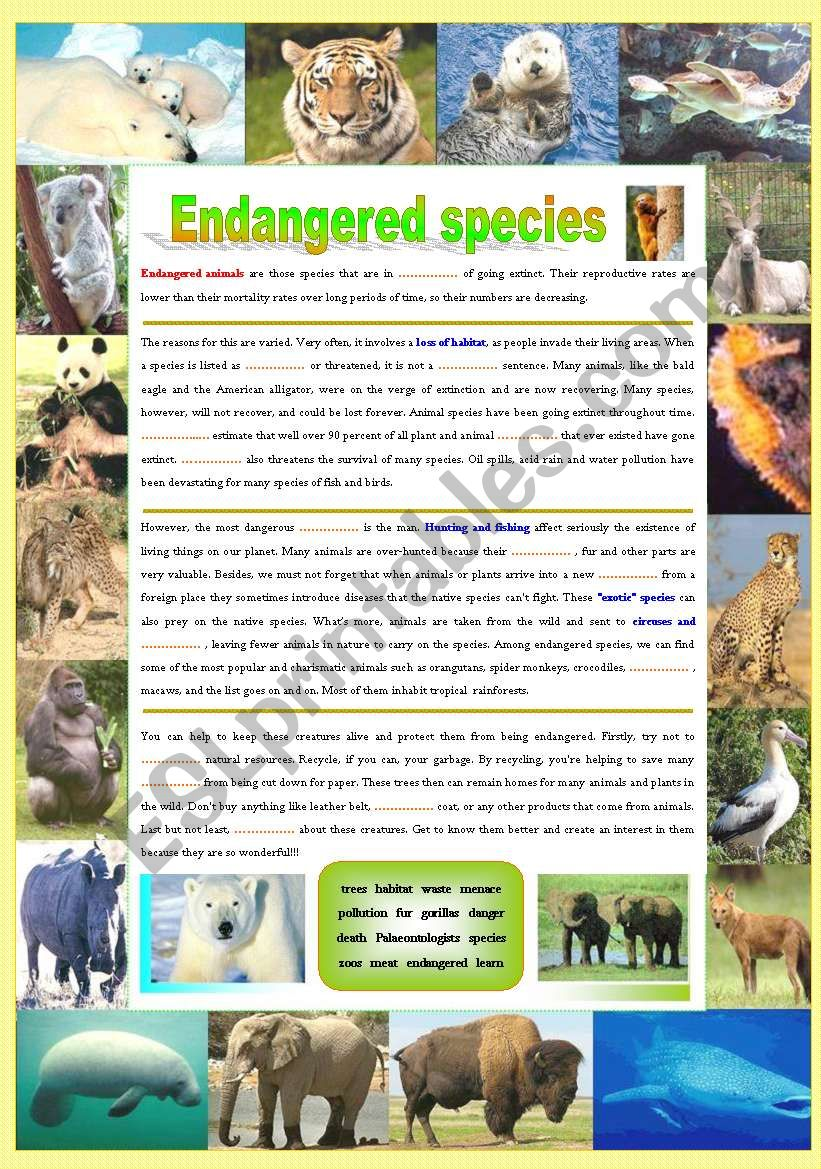 Endangered species (Part 1/5): Reading (Fill in the gaps)