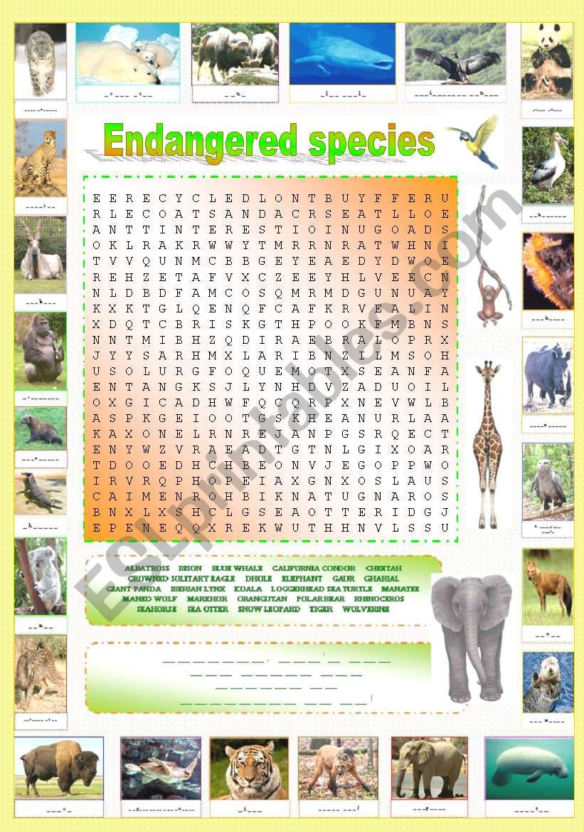 Endangered species (Part 3/5): Original wordsearch