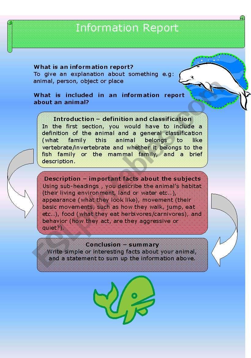 Information Report - Humpbacks