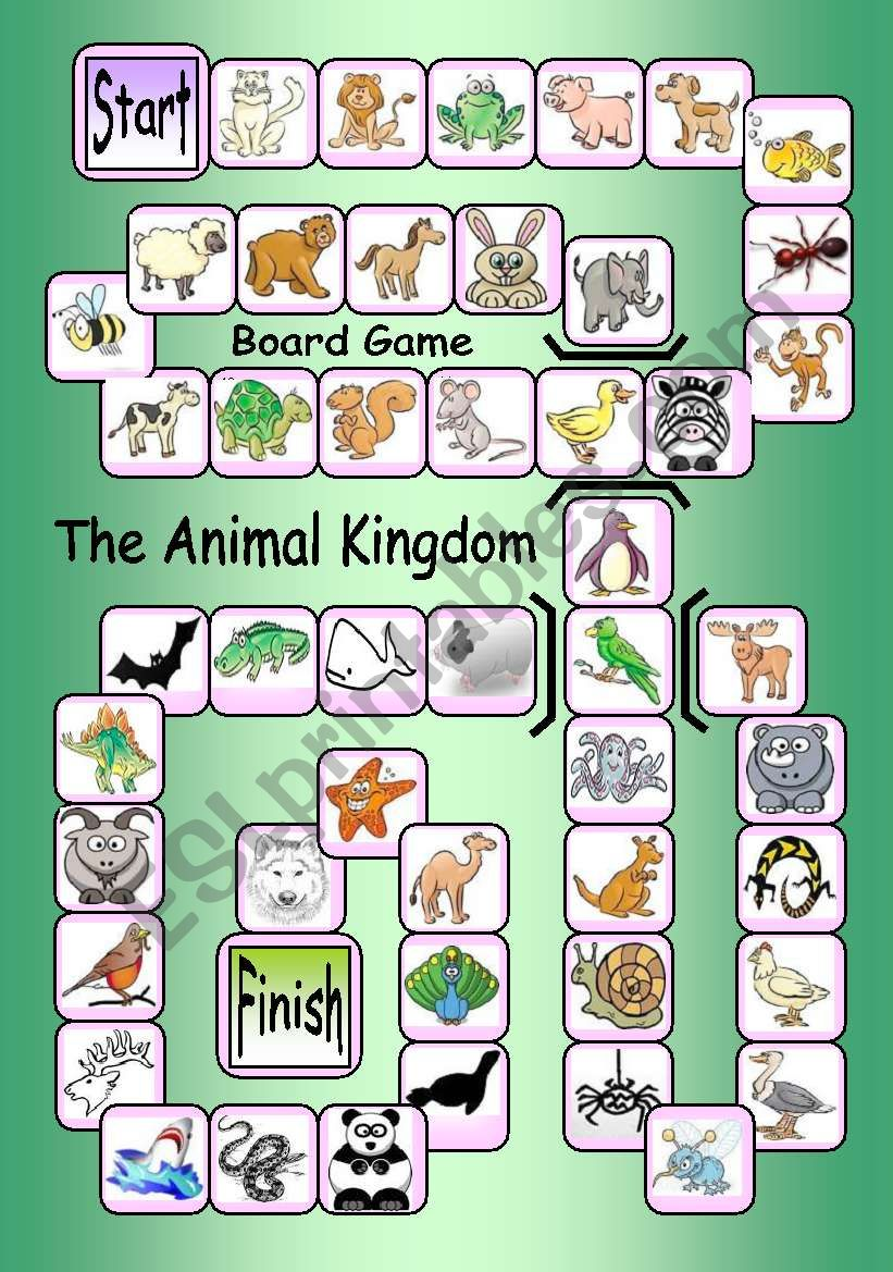 Board Game: The Animal Kingdom