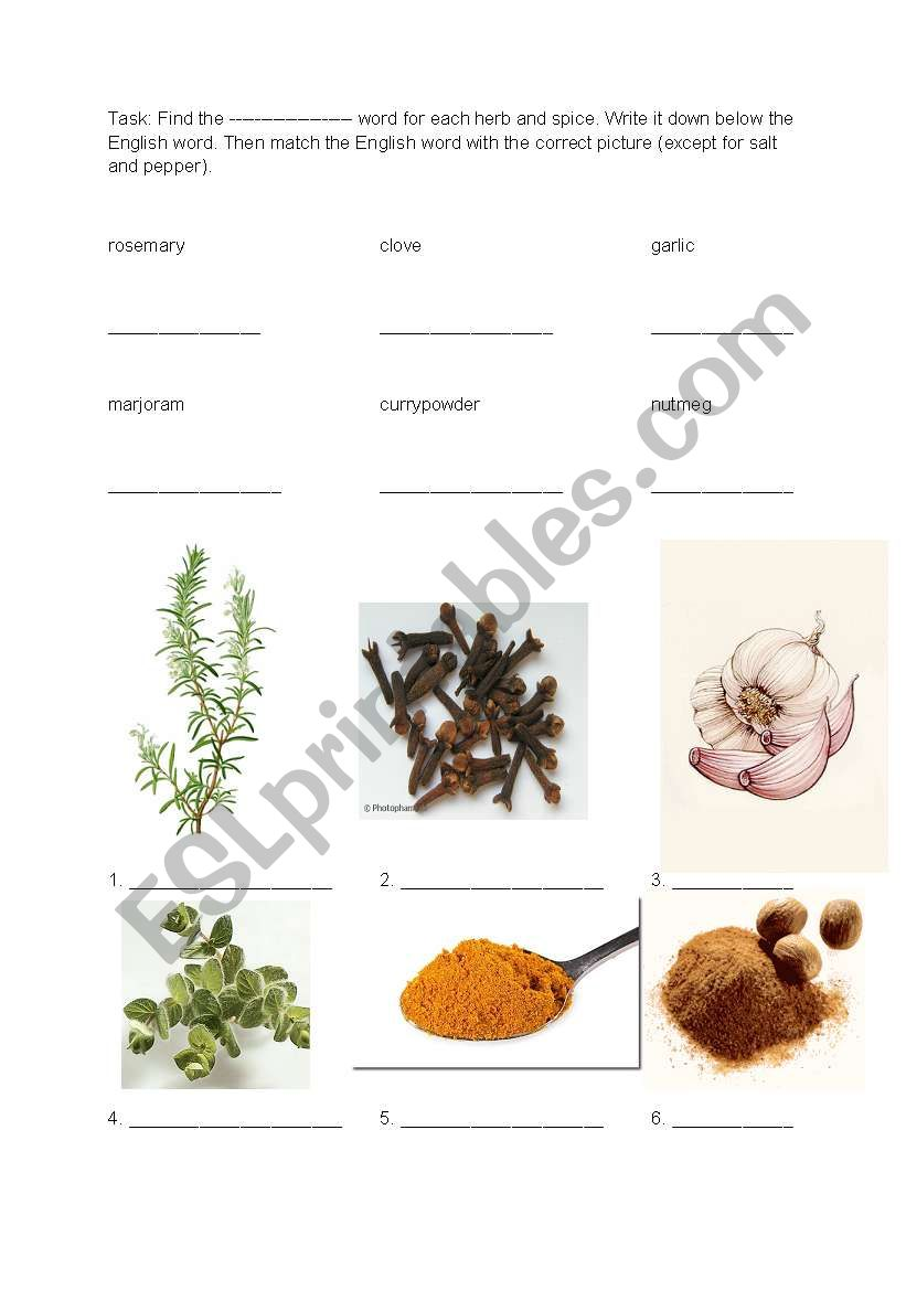 Food - herbs and spices 1 worksheet