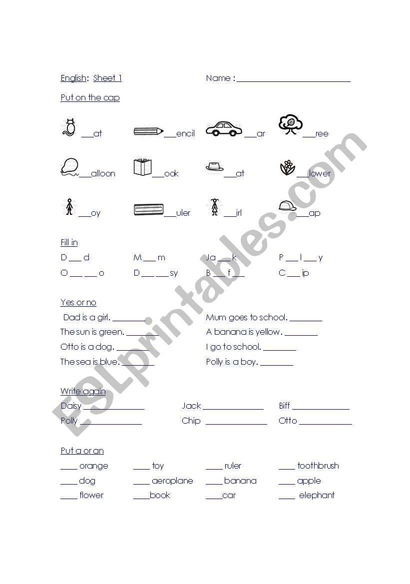 English Worksheets English Year 2