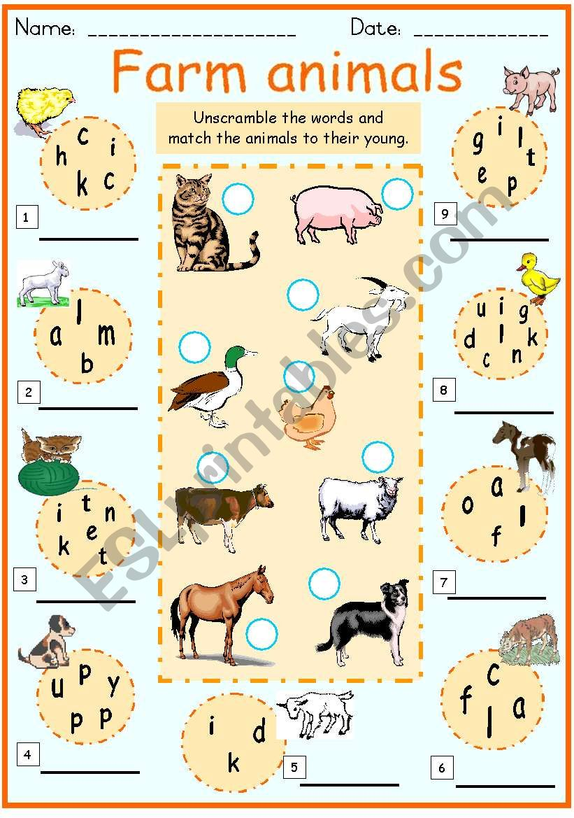 Farm animals and their young worksheet