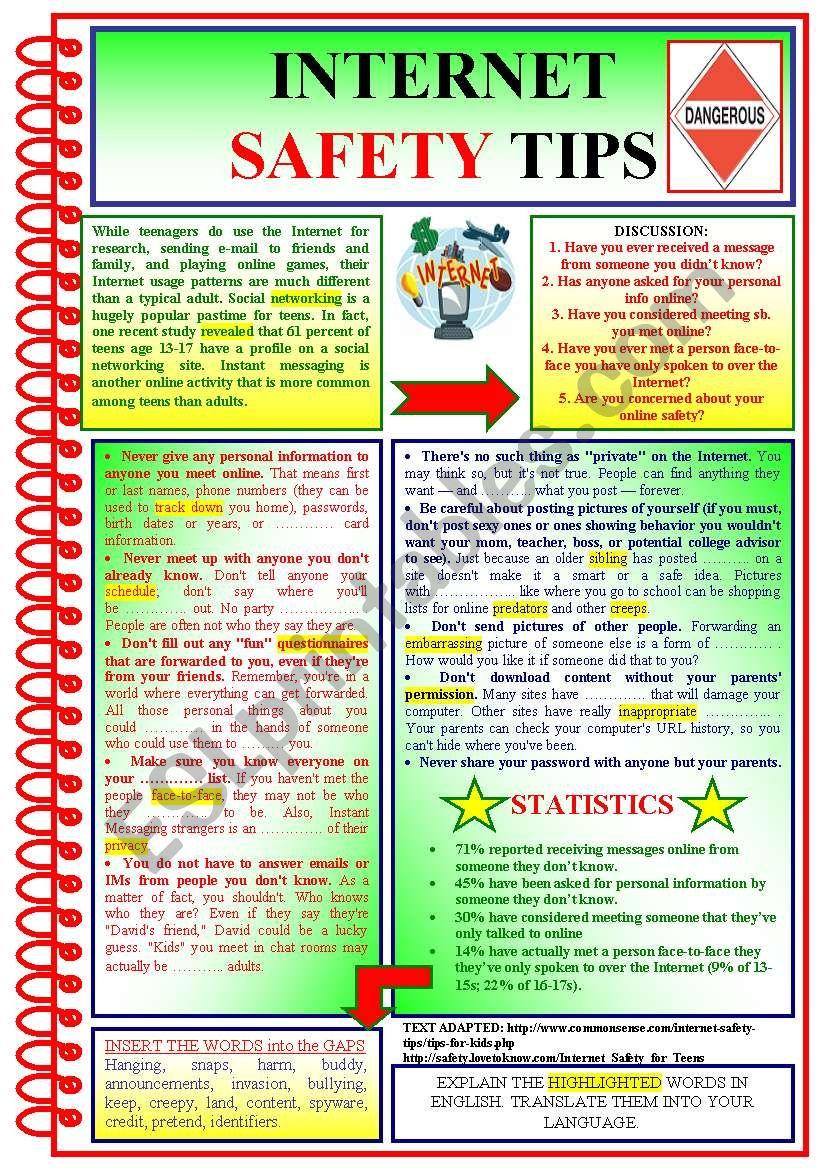 Internet Safety - ESL worksheet by Kate (kkcat)