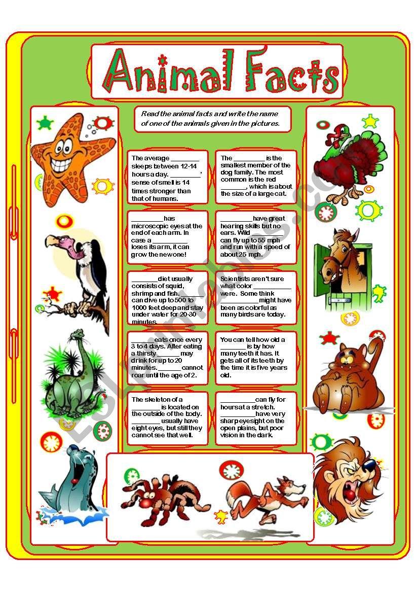 ANIMAL FACTS (3) worksheet