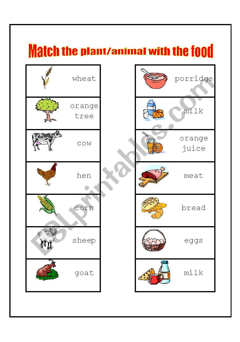 match the plant animal with the food esl worksheet by. Black Bedroom Furniture Sets. Home Design Ideas