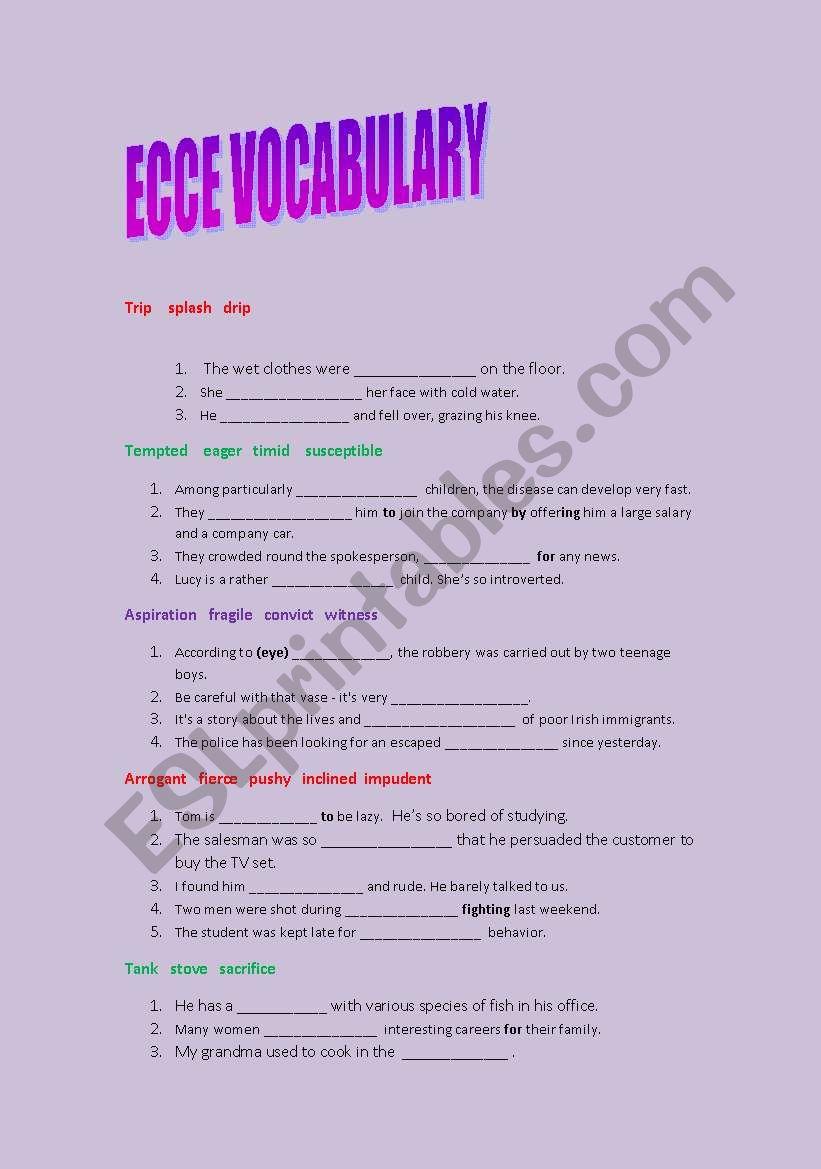 ecce vocabulary practice worksheet