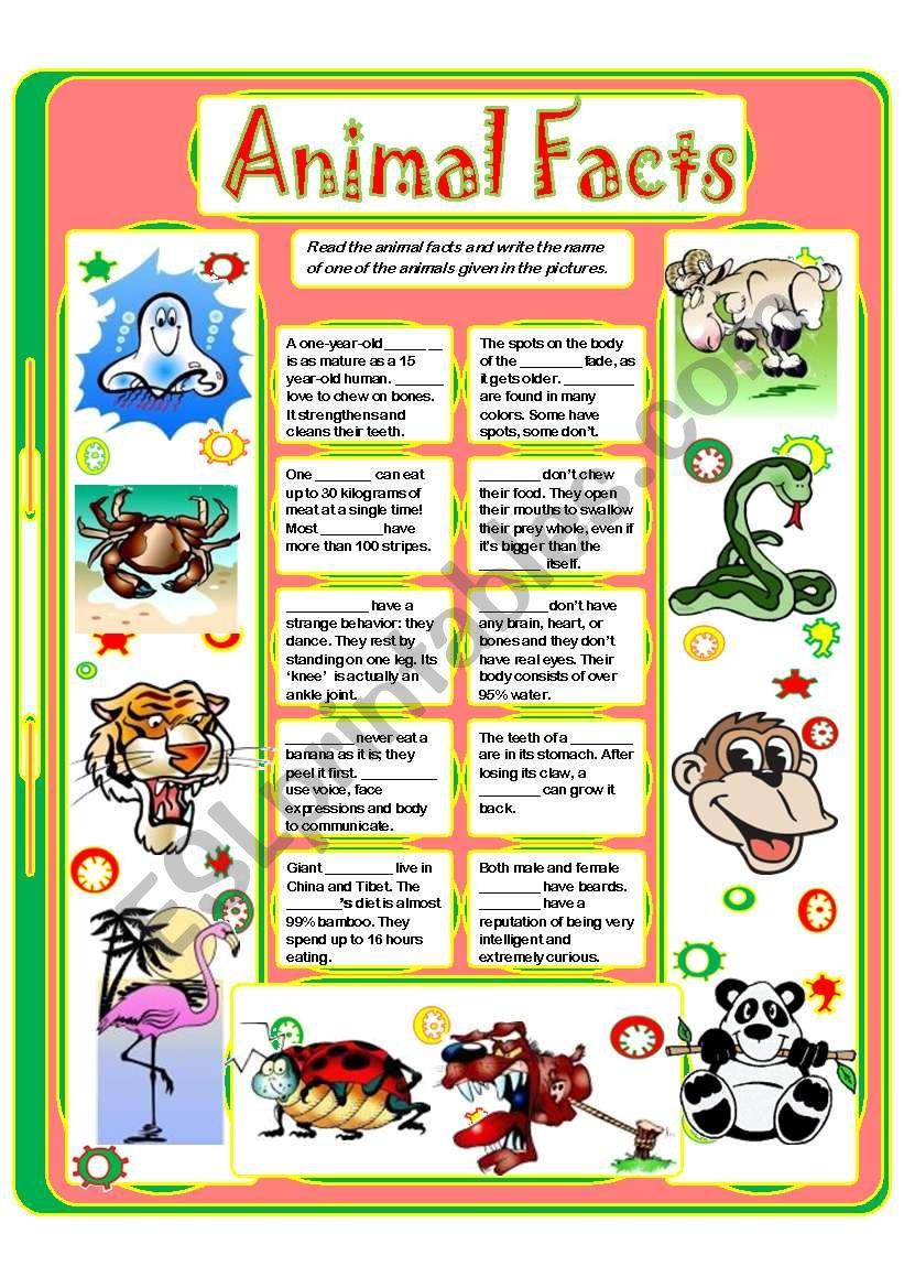 ANIMAL FACTS (4) worksheet