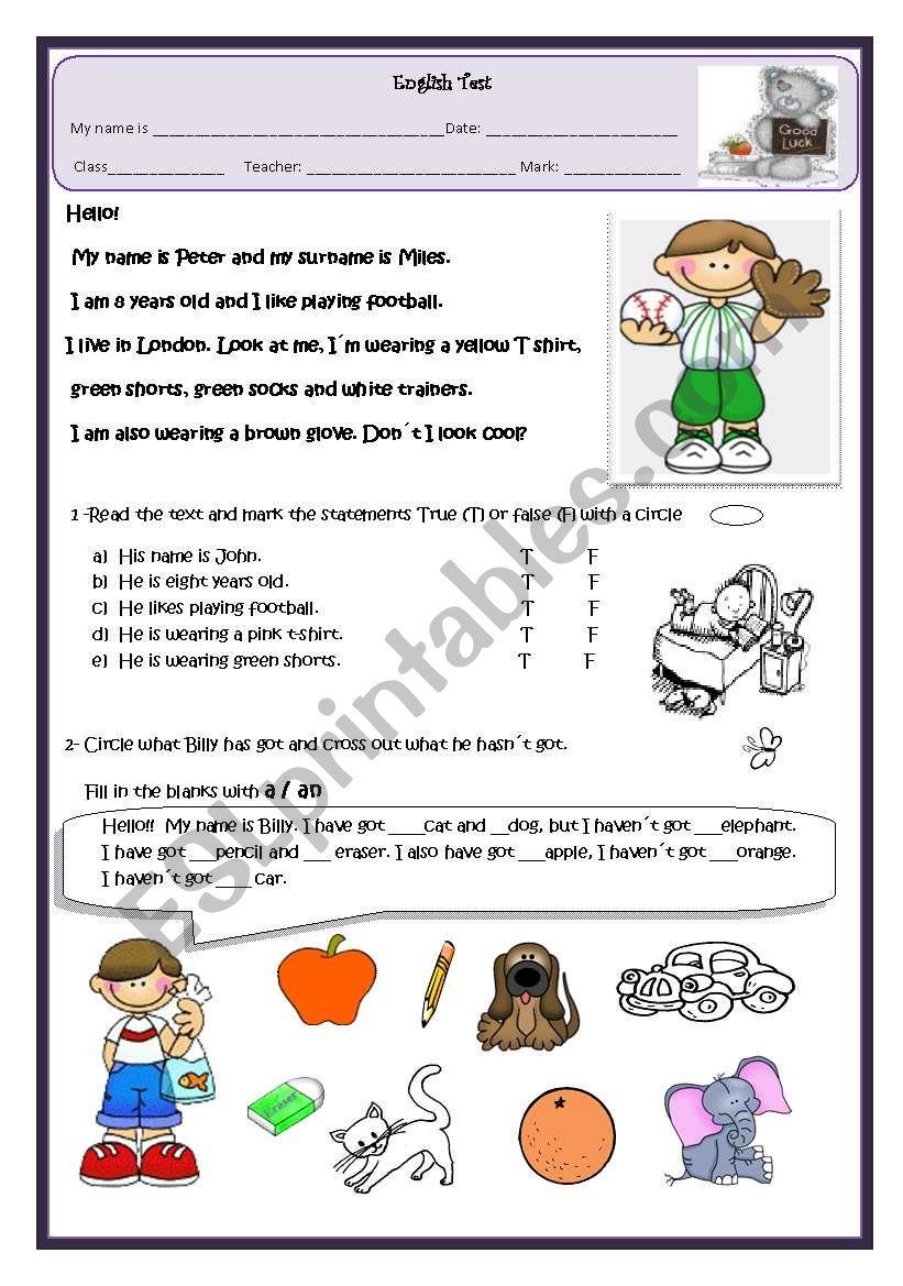 Elementary test worksheet