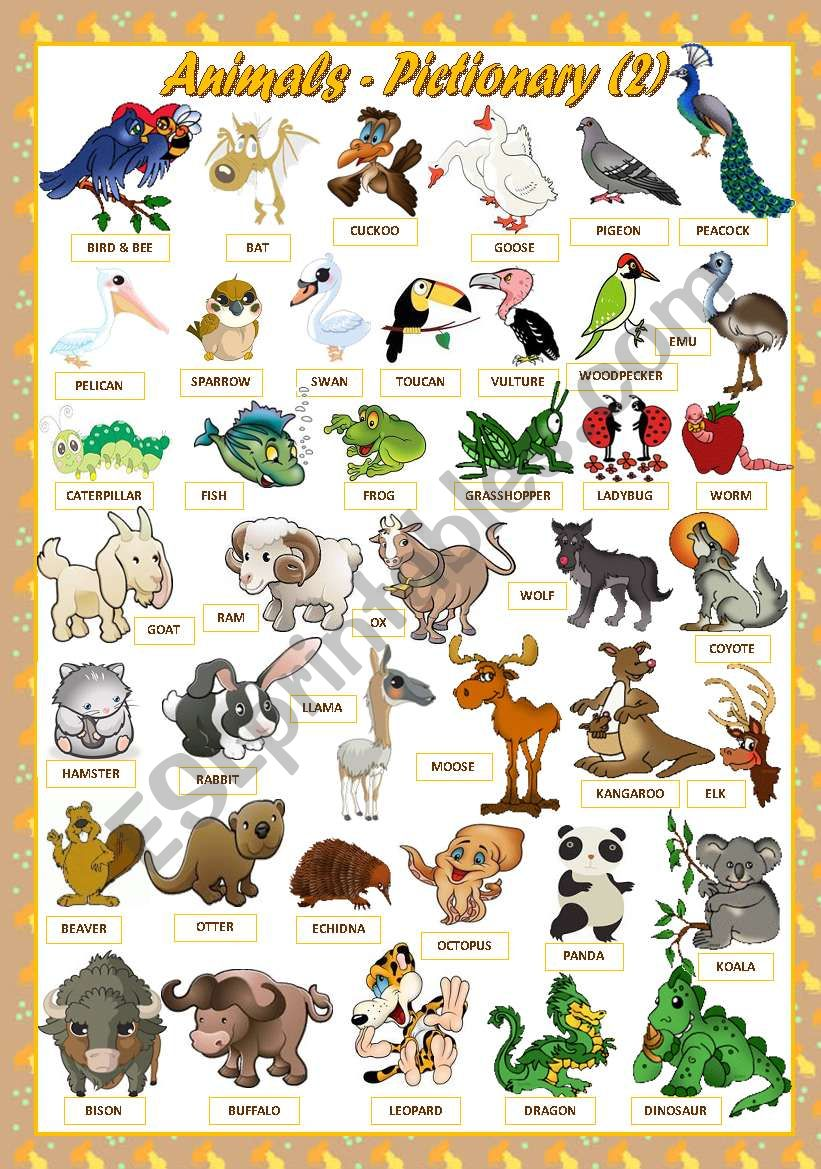 ANIMALS - PICTIONARY(2) worksheet