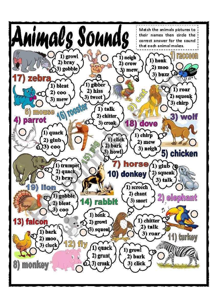 Animals Sounds (part 1) worksheet