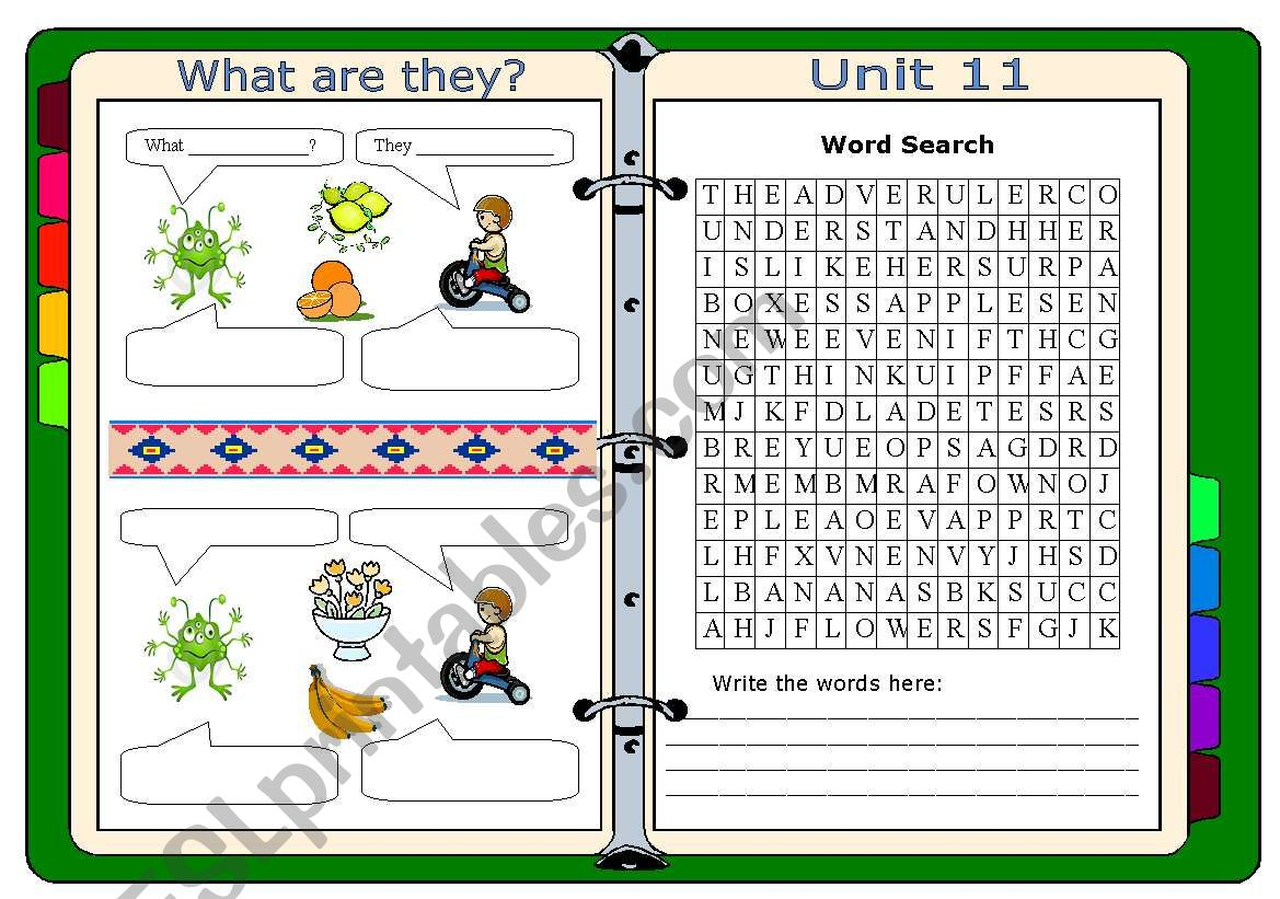 What are they?  worksheet