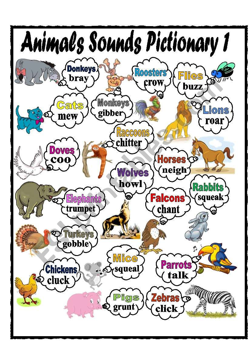 Animals Sounds Pictionary worksheet