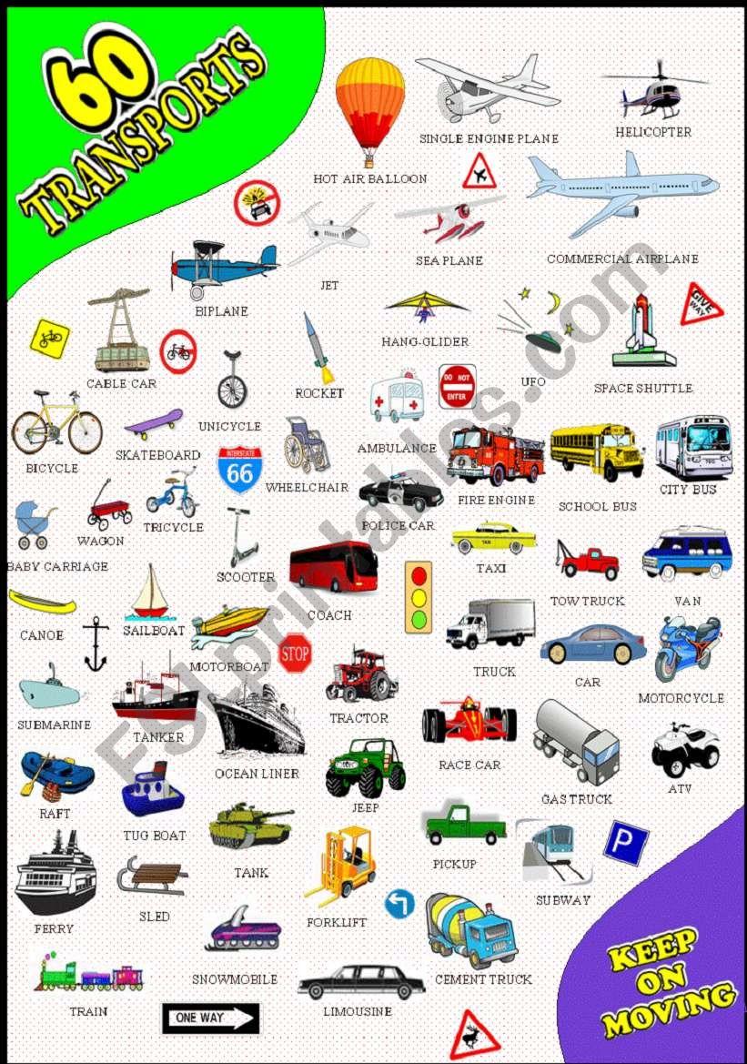 60 TRANSPORT PICTIONARY worksheet