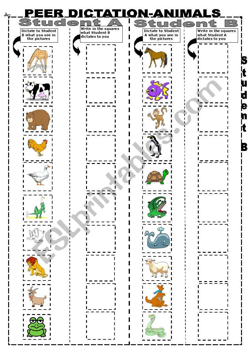 PEER DICTATION-ANIMALS worksheet