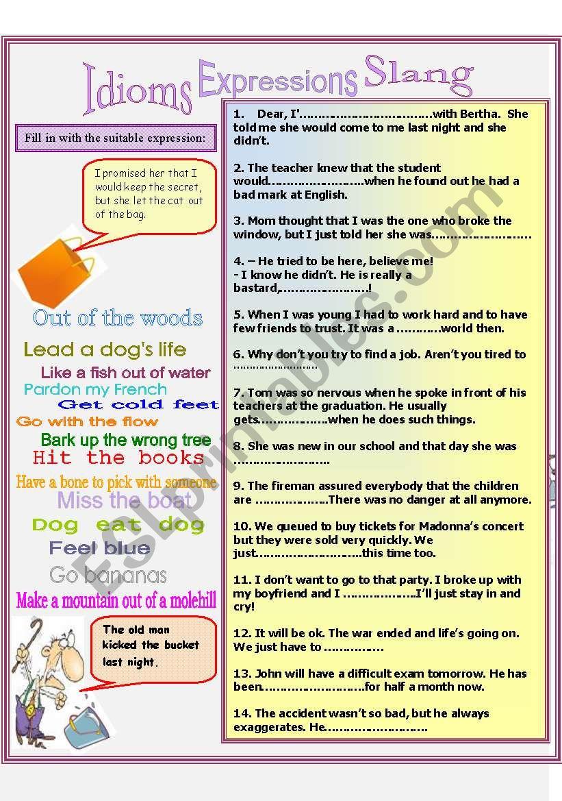 Idioms Expression Slang worksheet