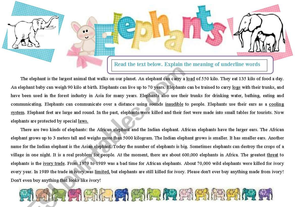 Reading. Elephants. worksheet