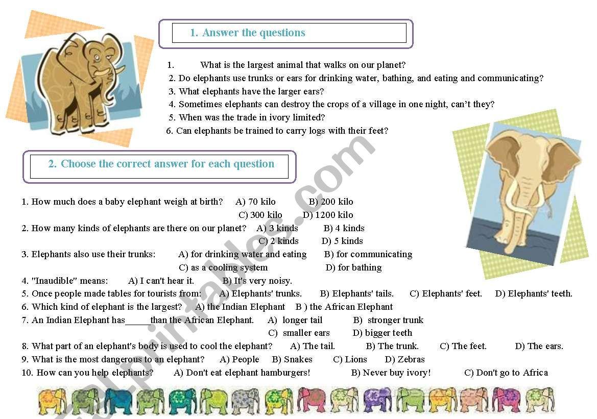 Elephants. Tasks worksheet