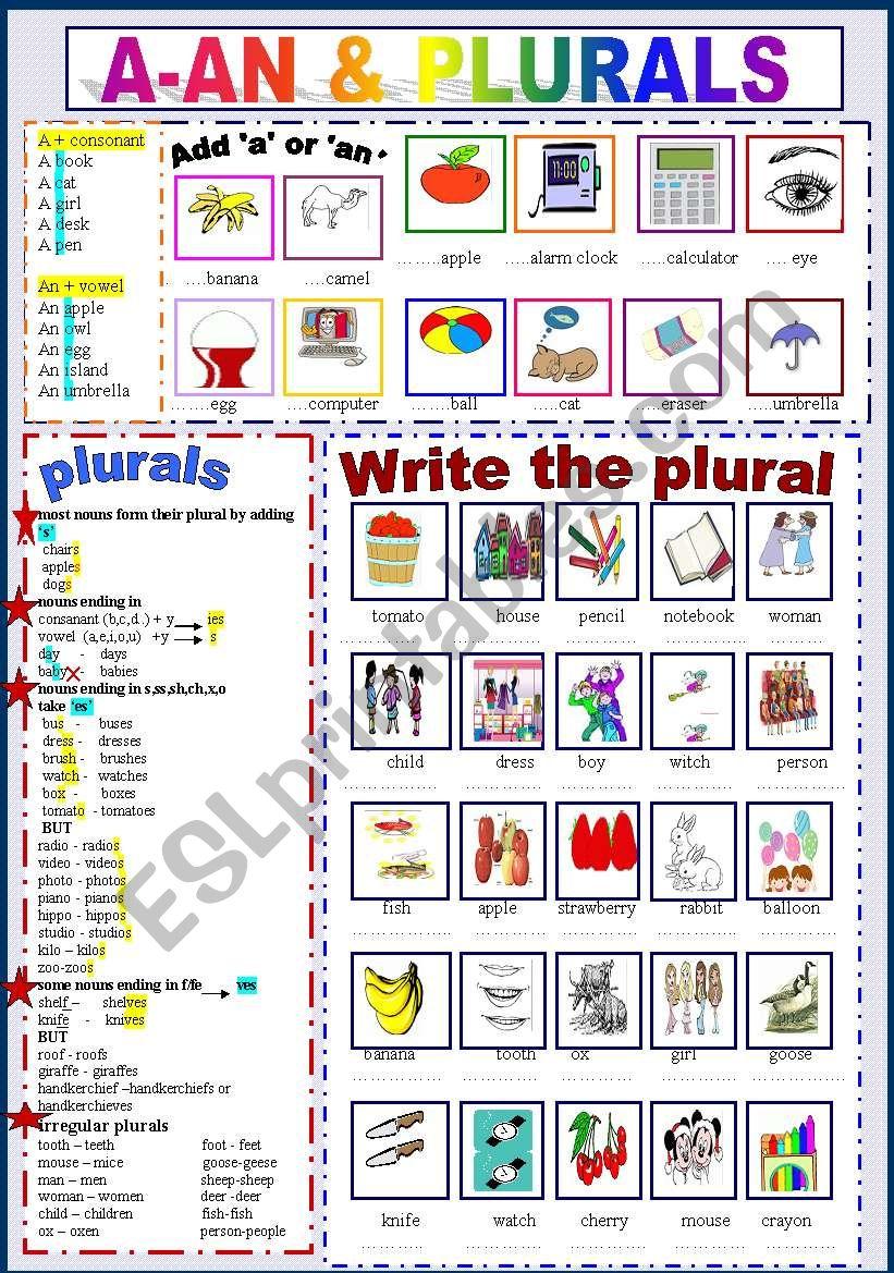 A - An & Plurals worksheet