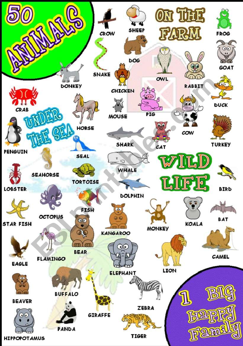 50 ANIMALS PICTIONARY WOW! worksheet