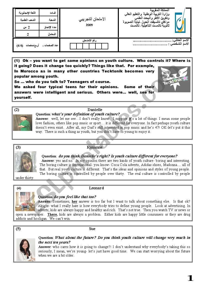 Youth Culture  worksheet