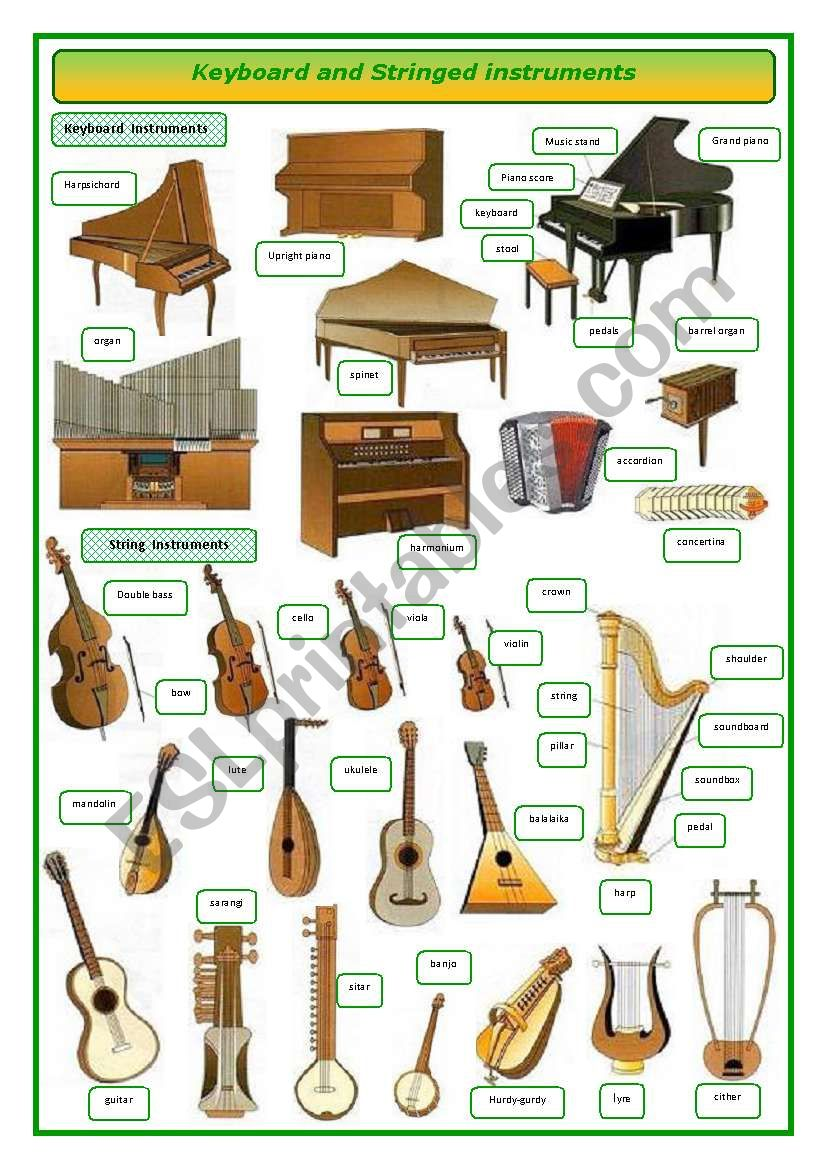 keyboard and stringed musical instruments -pictionary