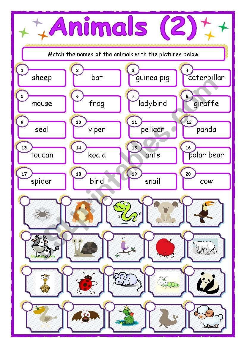 Animals - matching (2/3) worksheet