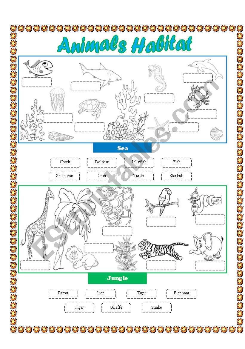 animals habitat sea jungle cut and paste esl worksheet by lupiscasu. Black Bedroom Furniture Sets. Home Design Ideas