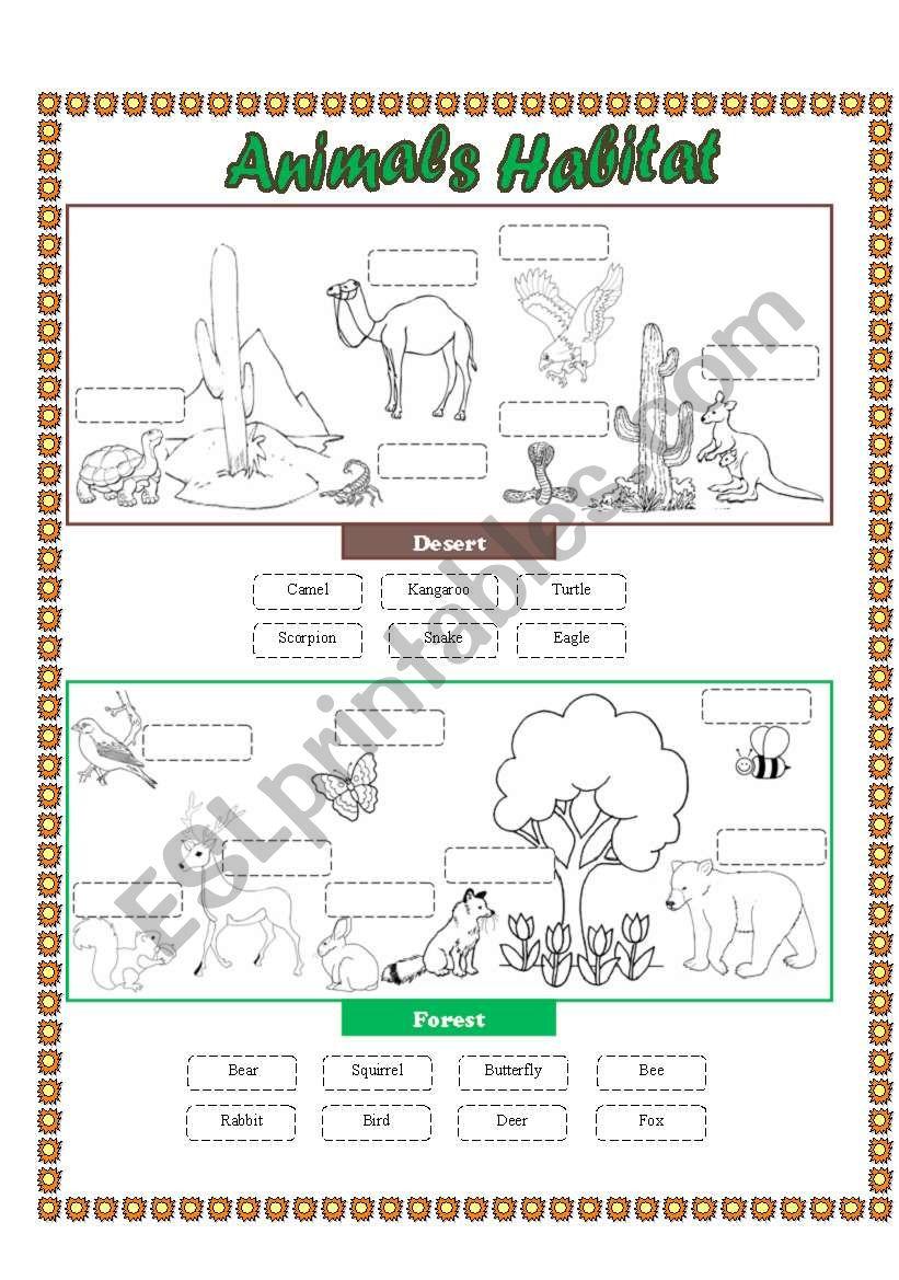 Animals Habitat (desert - forest) - Cut and paste part 2 ...