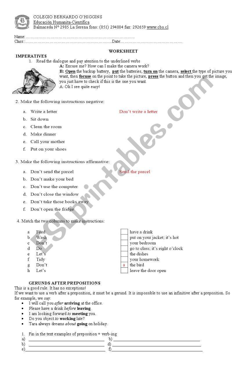 imperative  worksheet