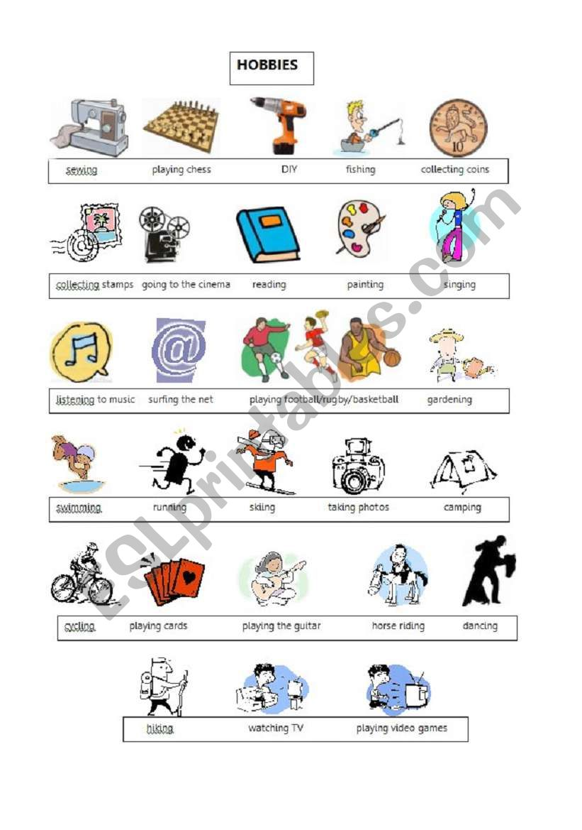 Hobbies: vocabulary worksheet worksheet
