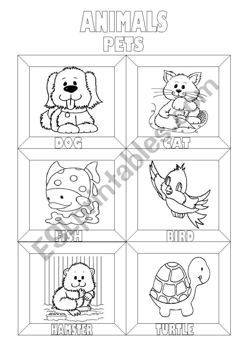 Animals Colouring Pictionary (3 pages)