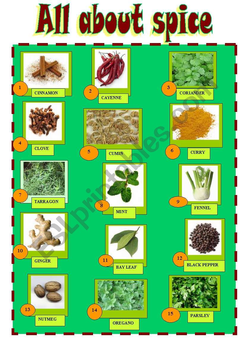 SPICES worksheet