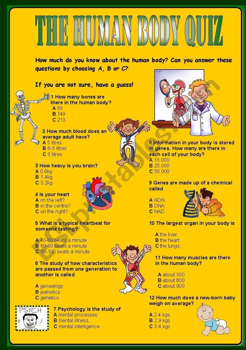 THE HUMAN BODY QUIZ worksheet