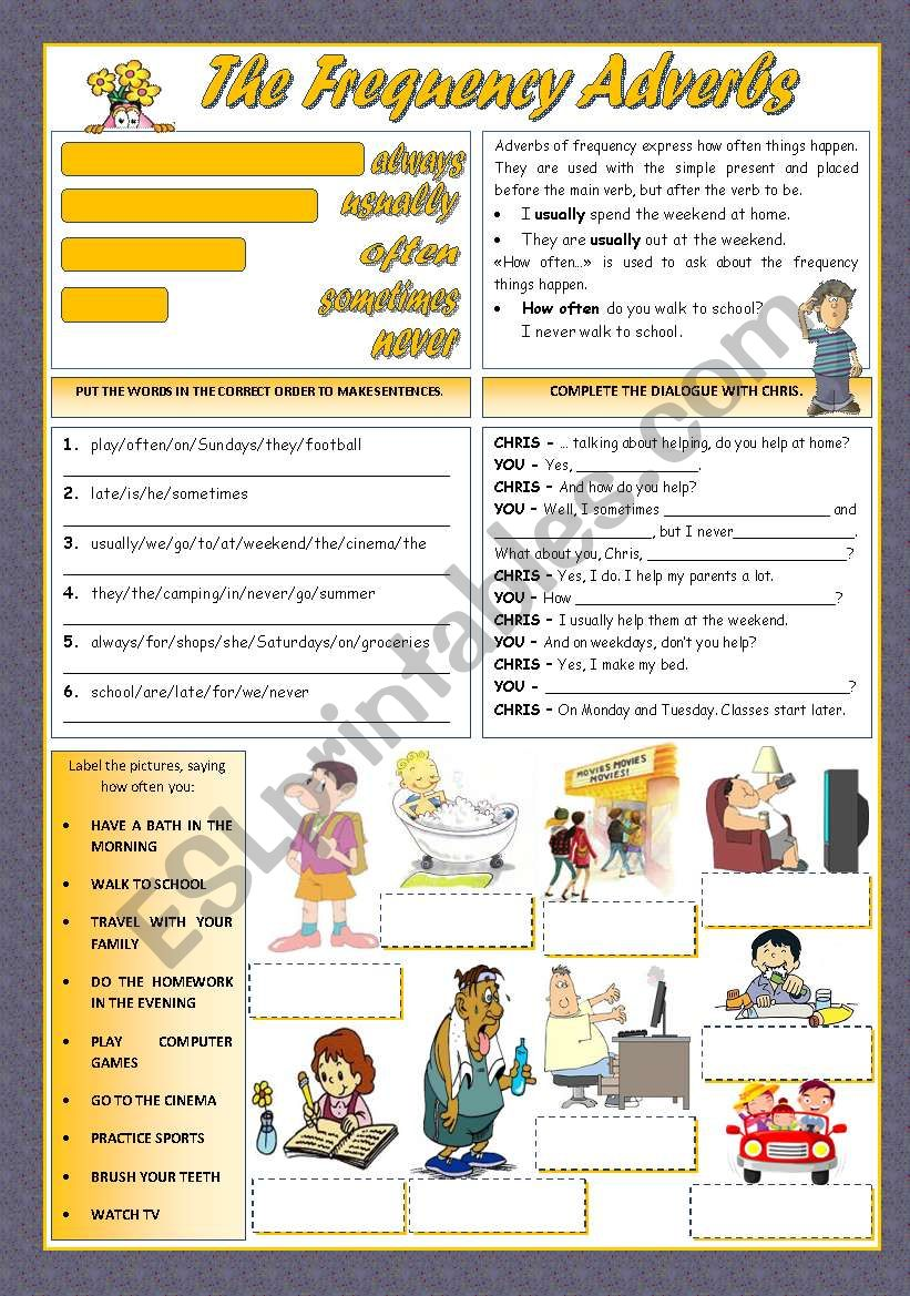 THE FREQUENCY ADVERBS worksheet
