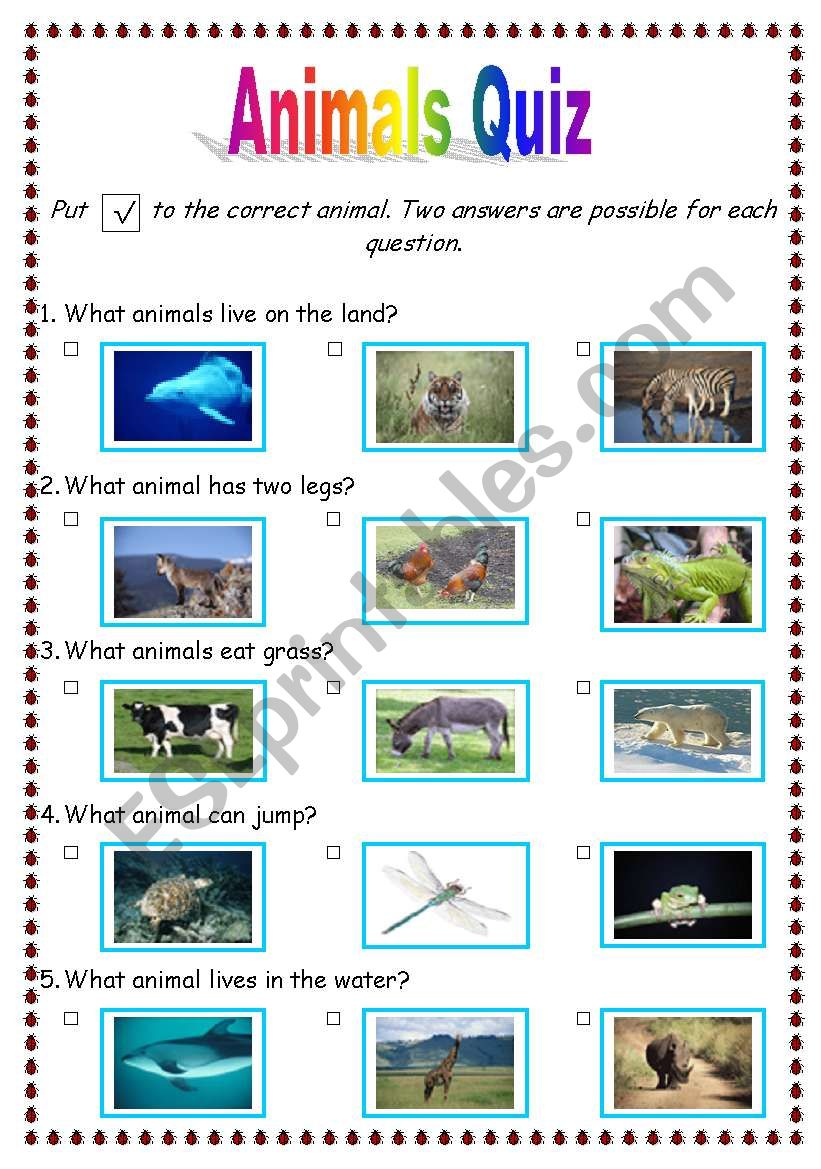 animals quiz worksheet