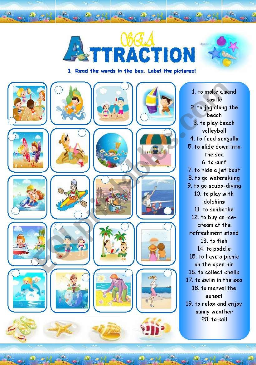 Sea Attraction (3 pages) worksheet
