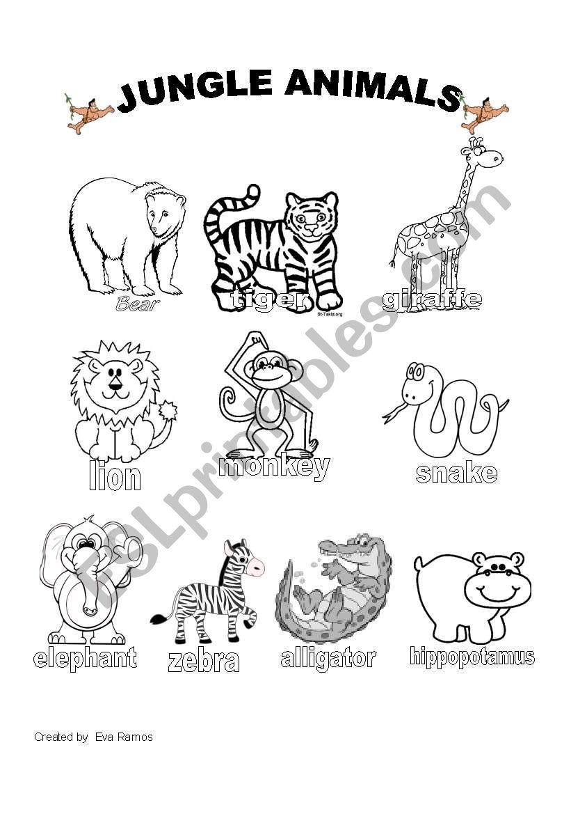 jungle animals worksheet 1 esl worksheet by evaramos. Black Bedroom Furniture Sets. Home Design Ideas