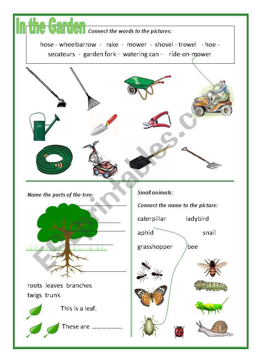 In the Garden worksheet