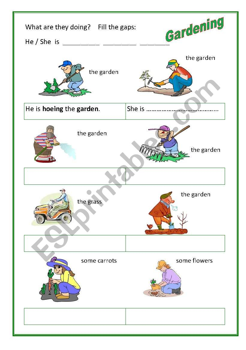 Gardening 2 worksheet