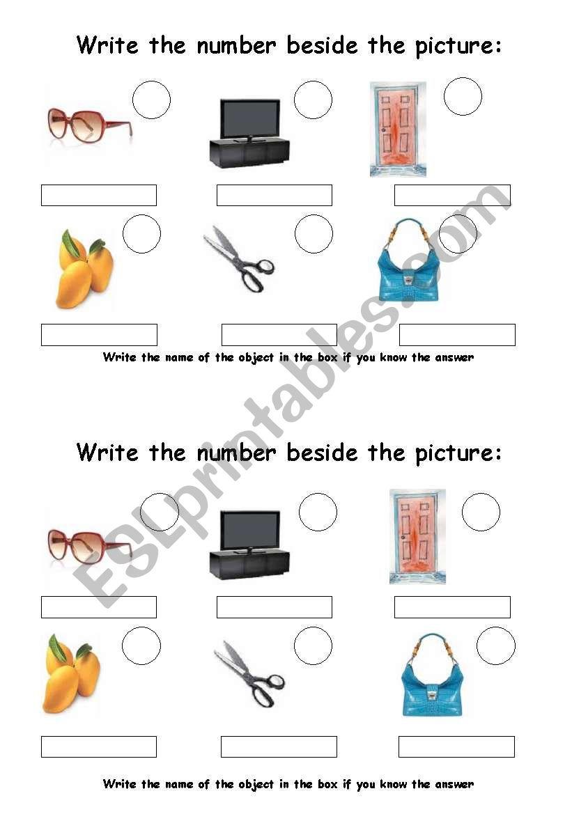 Describing everyday objects worksheet