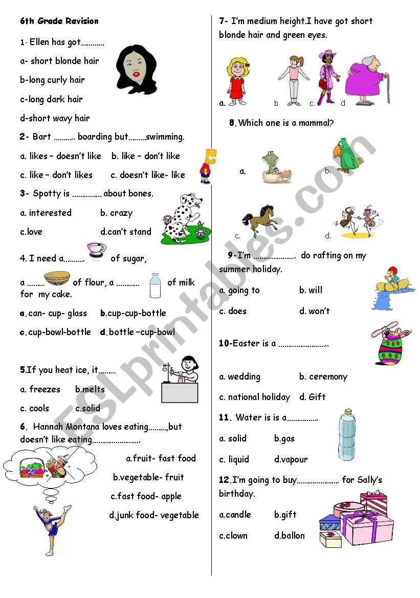 6th grade revision-2 worksheet