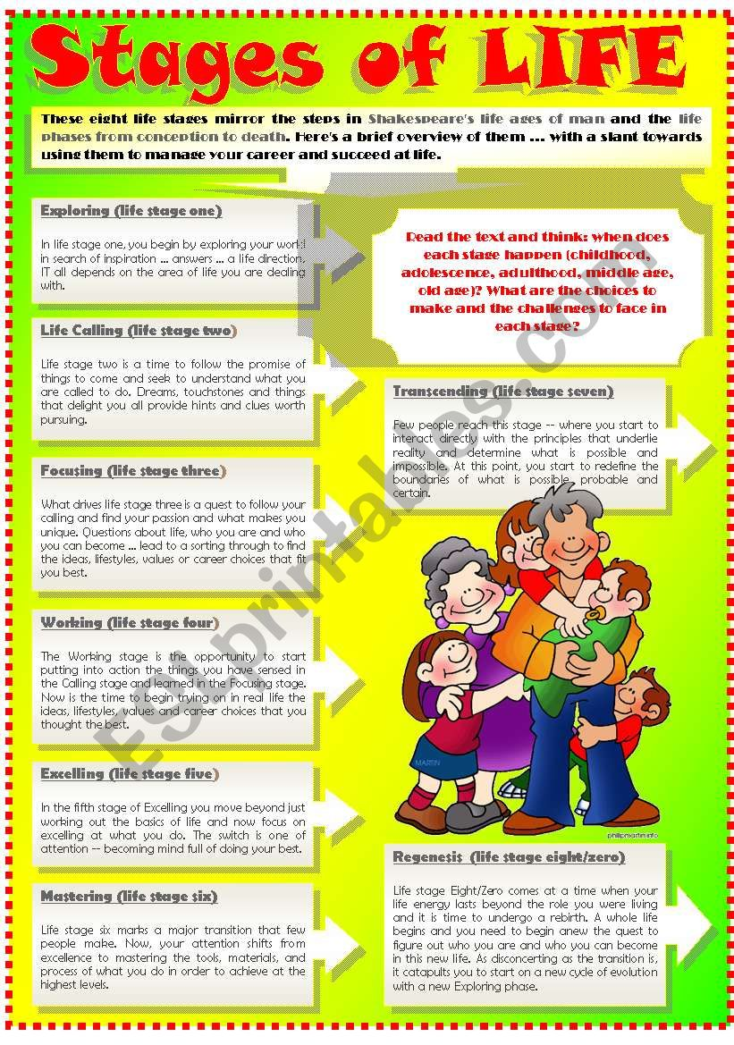 STAGES OF LIFE (Part 2) worksheet