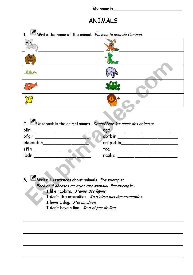 Basic Animals worksheet