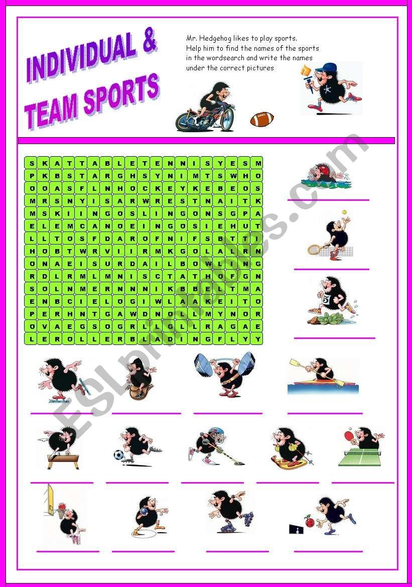 Sport - wordsearch  (Mr. Hedgehog series 2/3) - fully editable