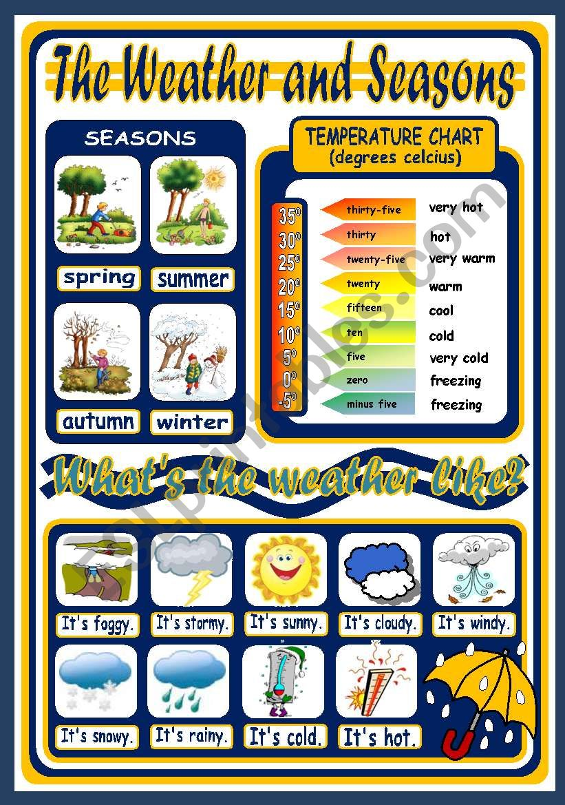 THE WEATHER POSTER worksheet