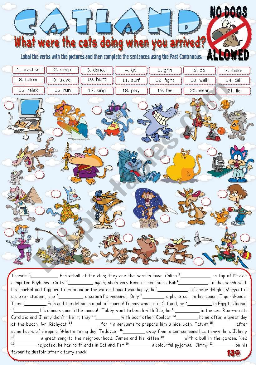 CATLAND - No Dogs Allowed worksheet