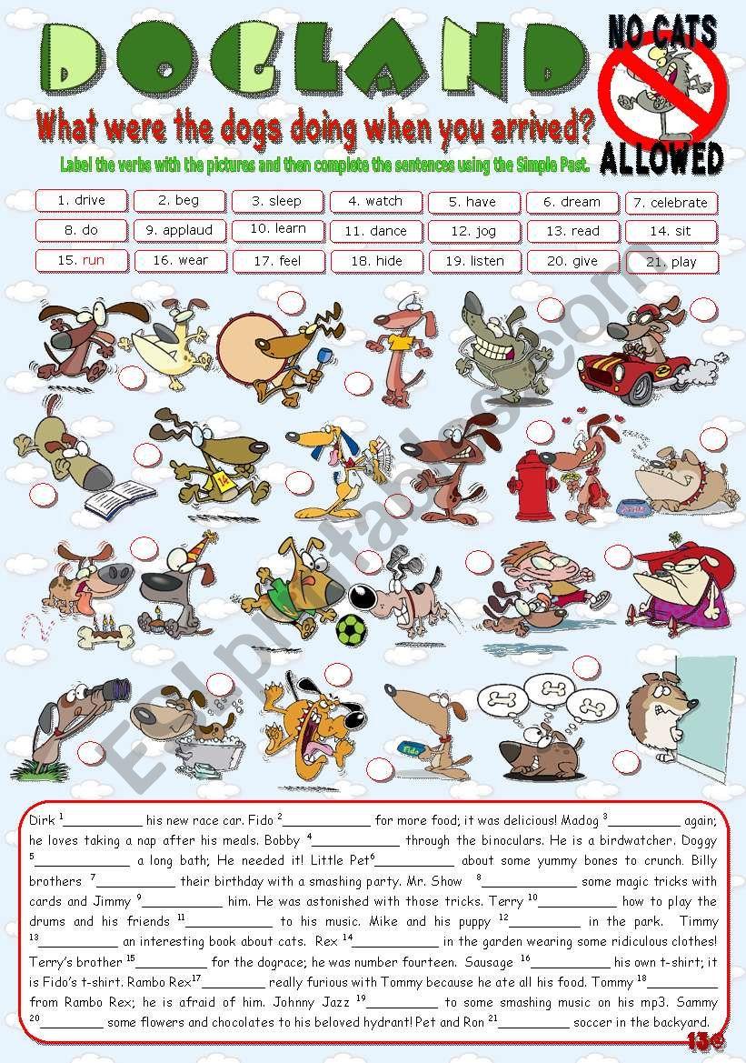 DOGLAND - No Cats Allowed worksheet